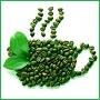 Зеленый кофе: полезные свойства и противопоказания