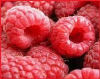 малина при сердечно-сосудистых заболеваниях